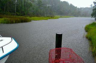 Rainatthedock