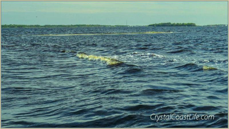 Oysterrockwaveeapril112015wm