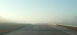Fog_8